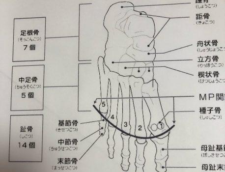 足の指(足根骨)マッサージ